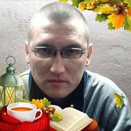 Дима, 32 года, Буинск