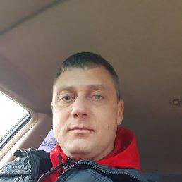 виктор, 35 лет, Ейск