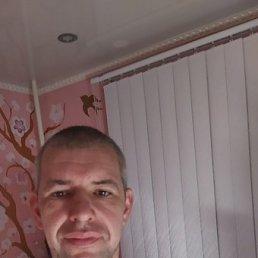 Алексей, 38 лет, Конаково