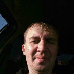 Ромарио, 37 лет, Липецк