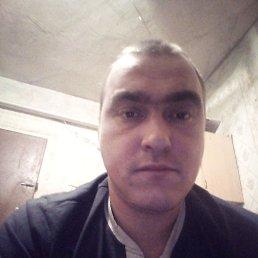 Дмитрий, 31 год, Сокол