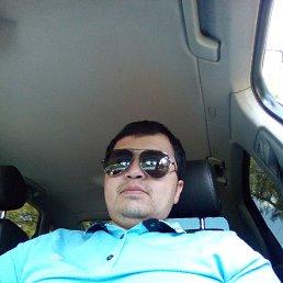 Миша, 28 лет, Крестцы
