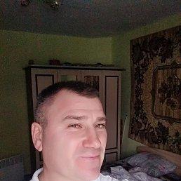 Сергей, 30 лет, Берегово