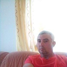 Vladimir, 49 лет, Берлин