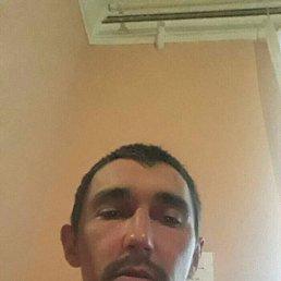 Виталик, 36 лет, Энергодар