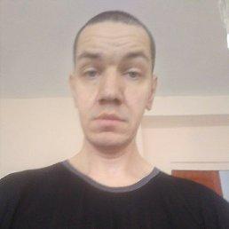 Андрей, 39 лет, Снежинск