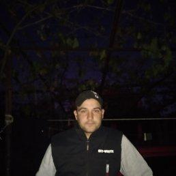 Дима, 25 лет, Беляевка