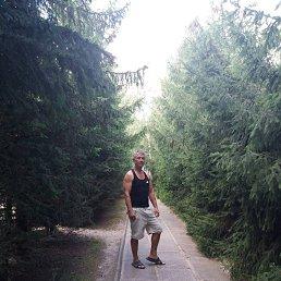 Владимир, 47 лет, Сарны