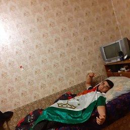 Руслан, 30 лет, Ярославль