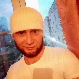 Тимур, 28 лет, Люберцы