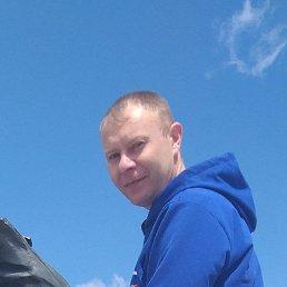 Андрей, 28 лет, Ефремов