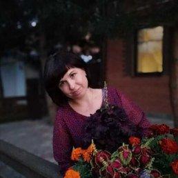 Елена, 41 год, Ржев