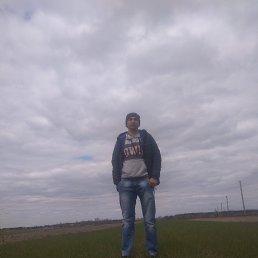 Ростислав, 33 года, Сарны