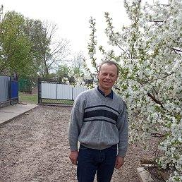 Мирослав, 39 лет, Тернополь