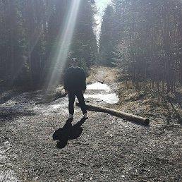 Алексей, Вологда, 41 год