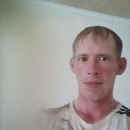 Мансур, 38 лет, Можга