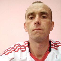 Алексей, 34 года, Калининград