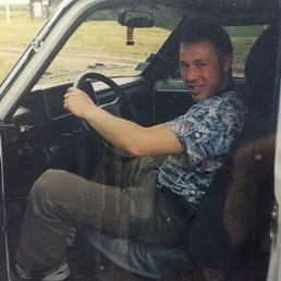 Андрей, 36 лет, Тюмень