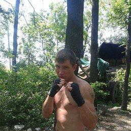 Алексей, 29 лет, Краснодарский