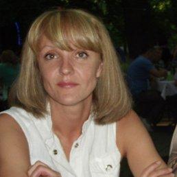 Алена, 41 год, Краснодар