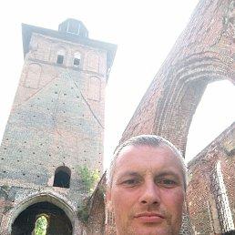 Алексей, 45 лет, Калининград