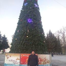 Александр, 35 лет, Ржев