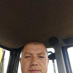Николай, 48 лет, Киреевск