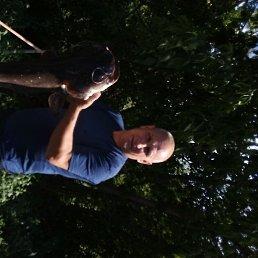 Сергей, 48 лет, Козьмодемьянск