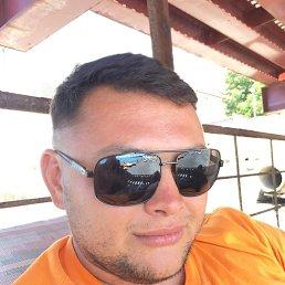 Александр, 28 лет, Сочи