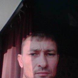 Евгений, 36 лет, Бугульма
