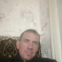 Роман, 41 год, Петровск