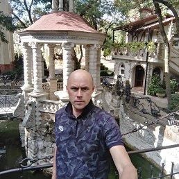 Сергей, 37 лет, Жуковский