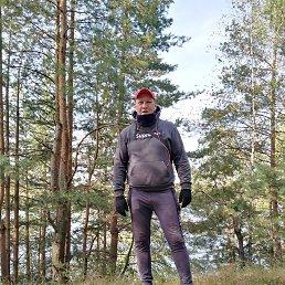 Сергей, 36 лет, Лыткарино