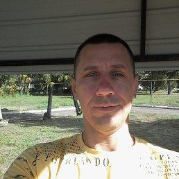 Владимир, 38 лет, Лохвица