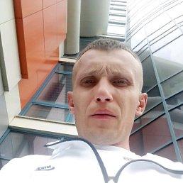 Дмитрий, 29 лет, Барнаул