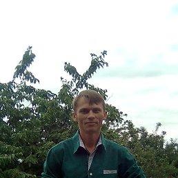 Алексей, 36 лет, Шахты