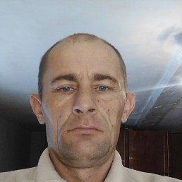 Николайтарасов, 37 лет, Камень-на-Оби