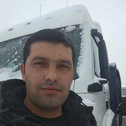 Сардор, 32 года, Домодедово