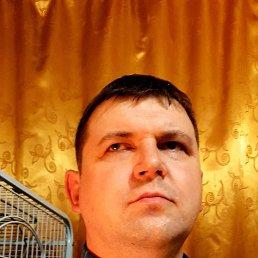 Дмитрий, 43 года, Набережные Челны