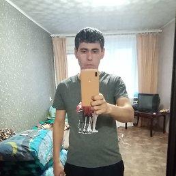 Перхат, 30 лет, Могилёв
