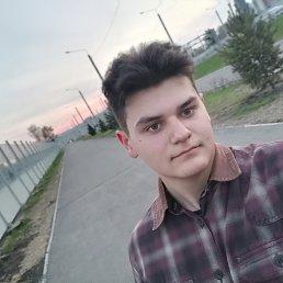 Алиса, 25 лет, Красноярск