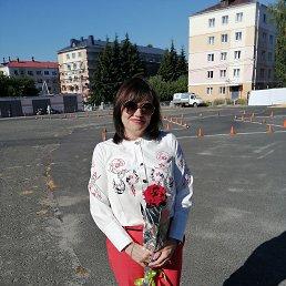 Алёна, 43 года, Белгород