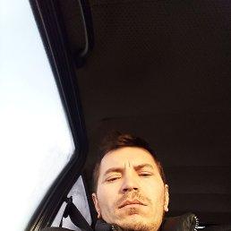 Николай, 27 лет, Кемерово