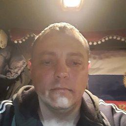 Виктор, 35 лет, Калининград