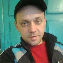 Колюня, 37 лет, Шахты