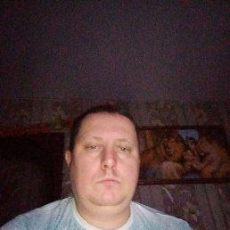 Илья, 37 лет, Тула