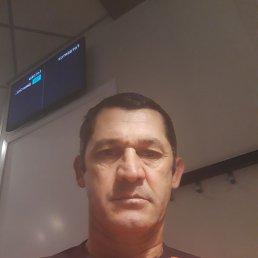 Сафар, 48 лет, Смоленск