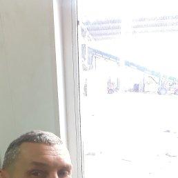 Андрей, 52 года, Тольятти