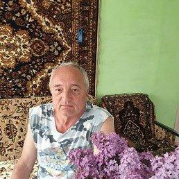 Николай, 66 лет, Курганинск