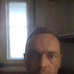 дмитрий, 45 лет, Задонск